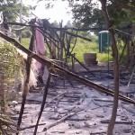 campamento-15oct