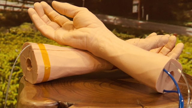 Google-piel-sintética