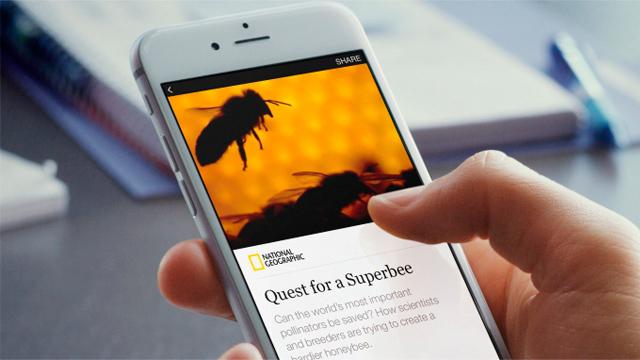 Facebook ahora publicará artículos de medios directamente en tu news feed - Código Espagueti