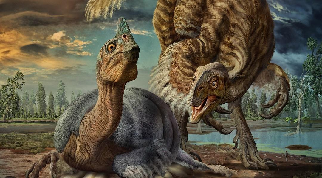 Descubren una nueva especie de dinosaurio gracias a un fósil bebé