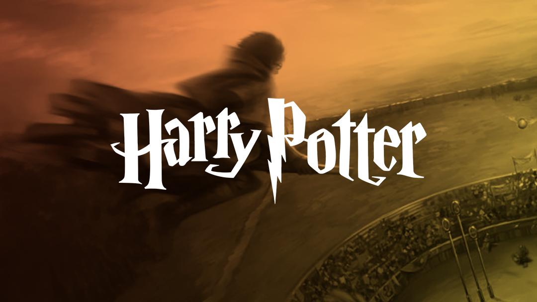Creí que era Harry Potter y jugué Quidditich toda la tarde