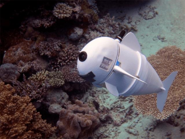 El MIT presenta un pez robot que se maneja con un control de SNES