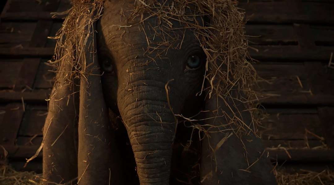 Dumbo-teaser-live-action