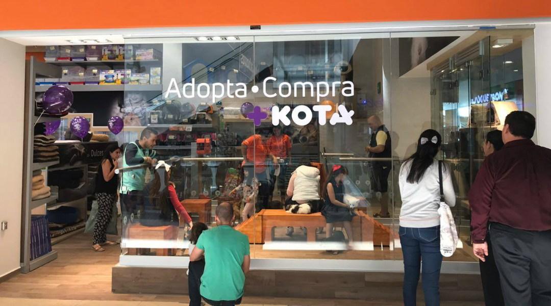 +Kota compró Petsy, el e-commerce mexicano para mascotas