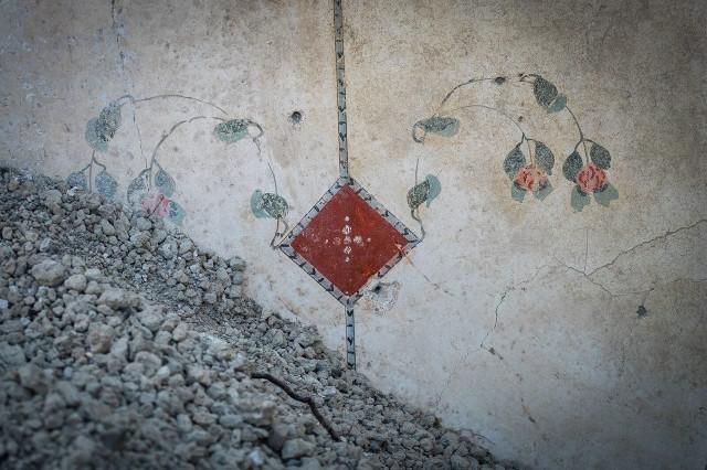 Motivo decorativo Foto: Cesare Abbate / Parco Archeologico di Pompei