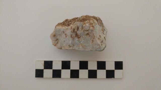 Piedra encontrada dentro de la quijada del 'Vampiro de Lugnano'