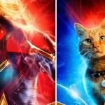 Avengers Endgame, Captain Marvel, Teoría, Goose