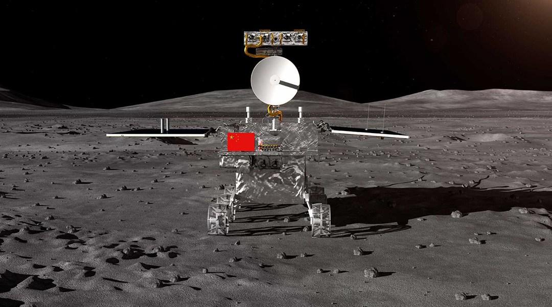 Image result for planta luna