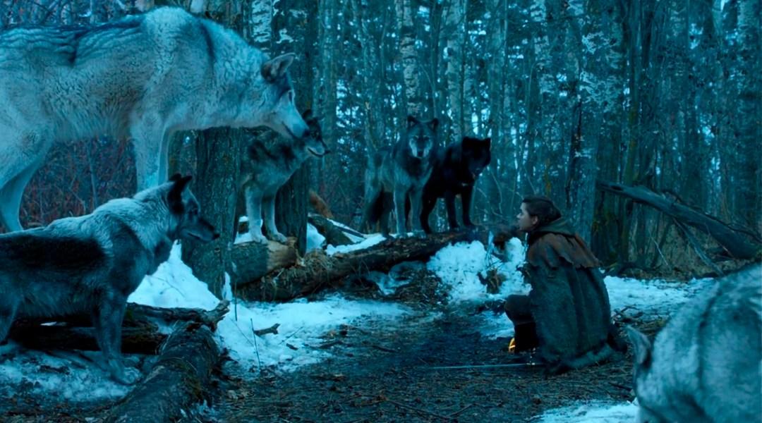 Game Of Thrones, Temporada 8, Huargos, Final