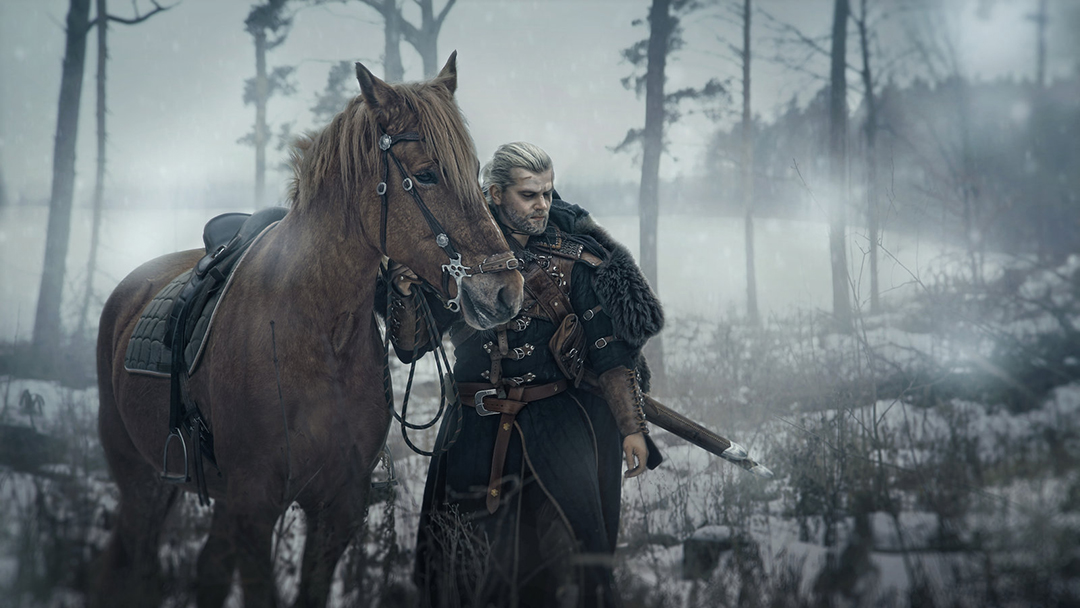 Roach The Witcher