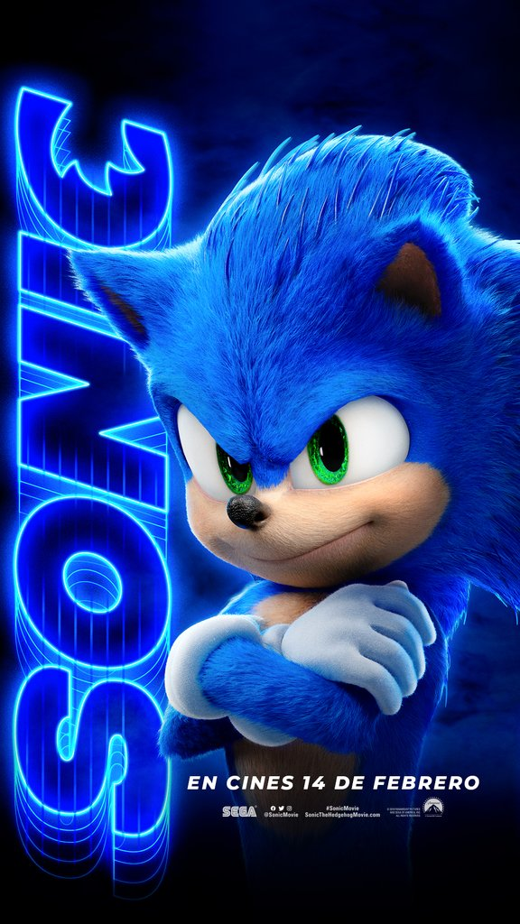 Sonicc the hedgehog póster