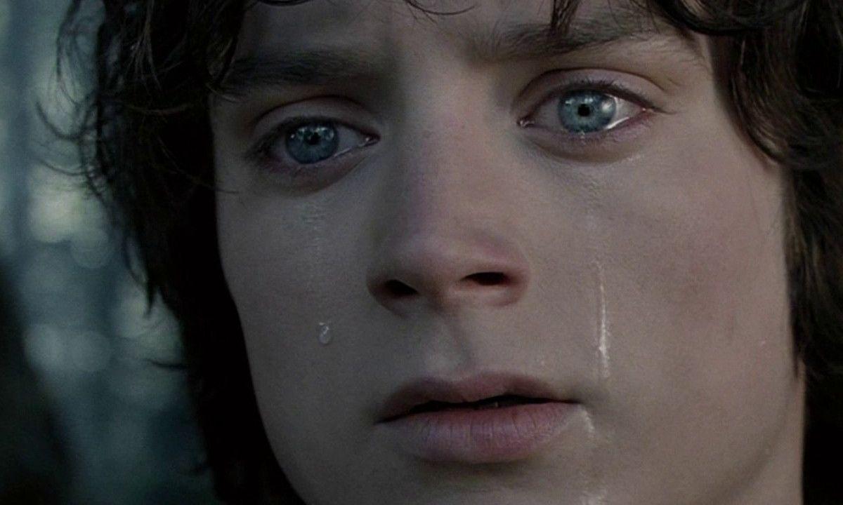 Elijah Wood Ian Holm Lord Of The Rings
