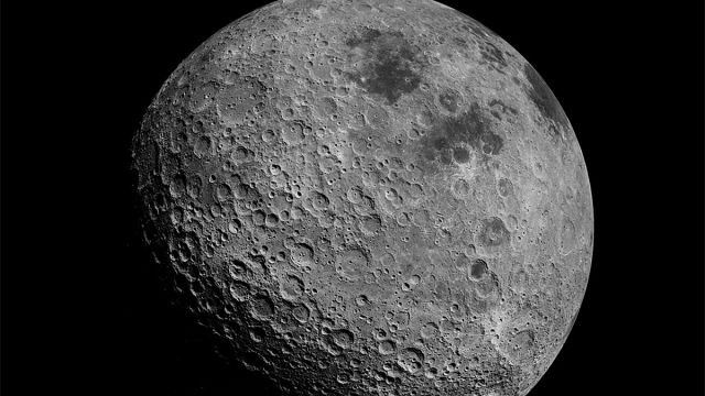 NASA NASA Rábanos NASA Rábanos Luna