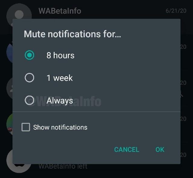 WhatsApp Grupos Silenciar