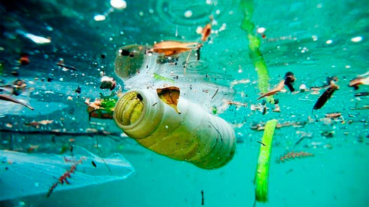 Contaminación oceano