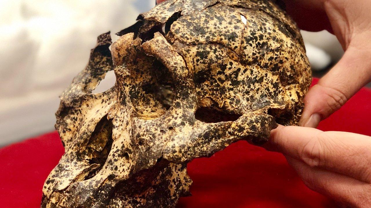 Hallan fósil de especie humana extinta