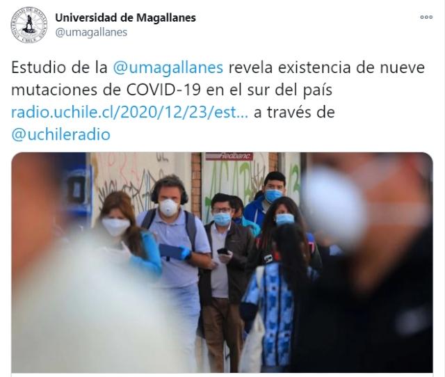 Detectan nueve mutaciones de coronavirus en el sur de Chile