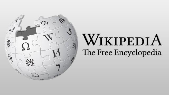 Wikipedia 20 años Carmen Alcazar Metik