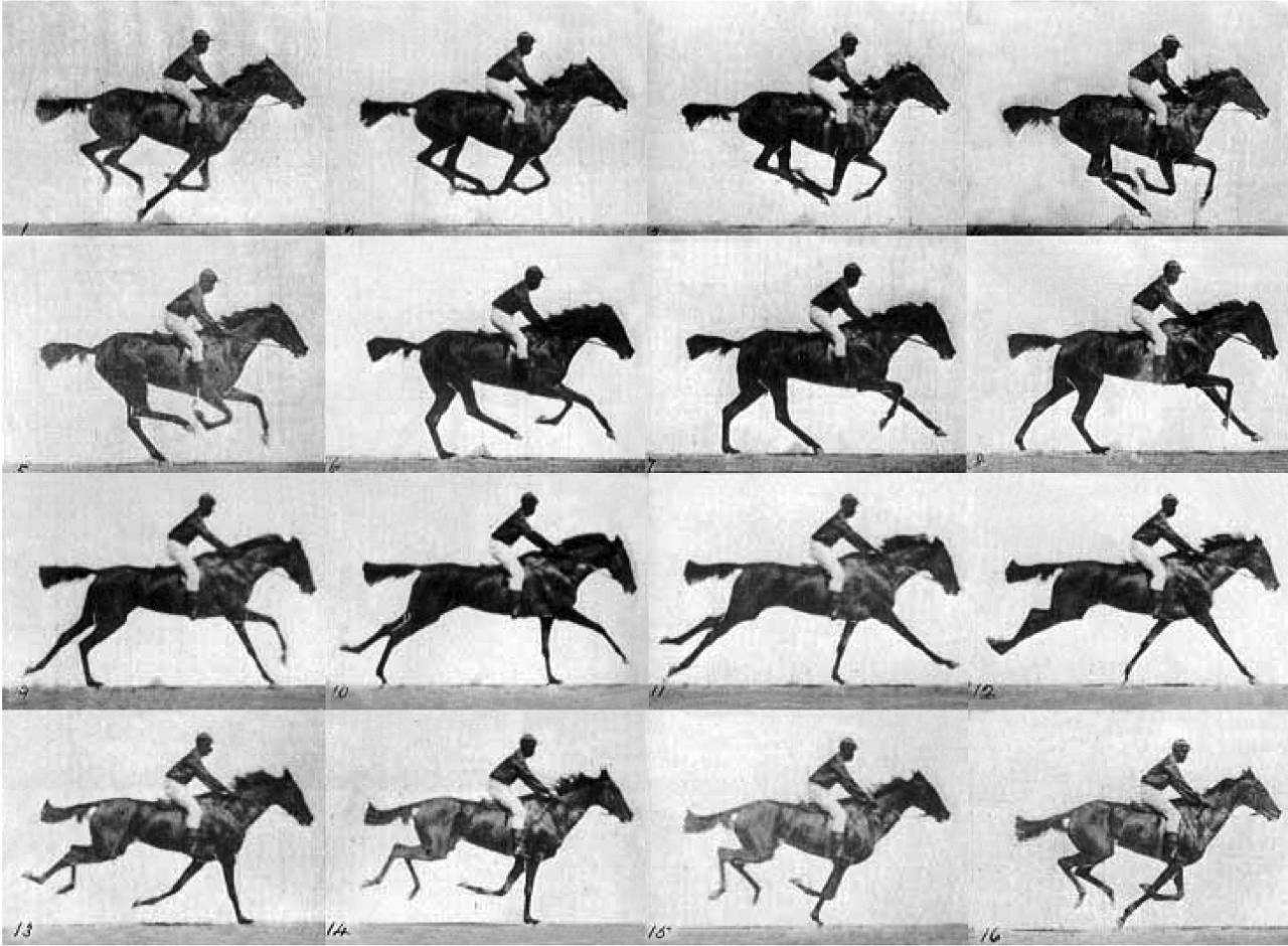 Imagenes de El caballo en movimiento del investigador británico Eadweard Muybridge