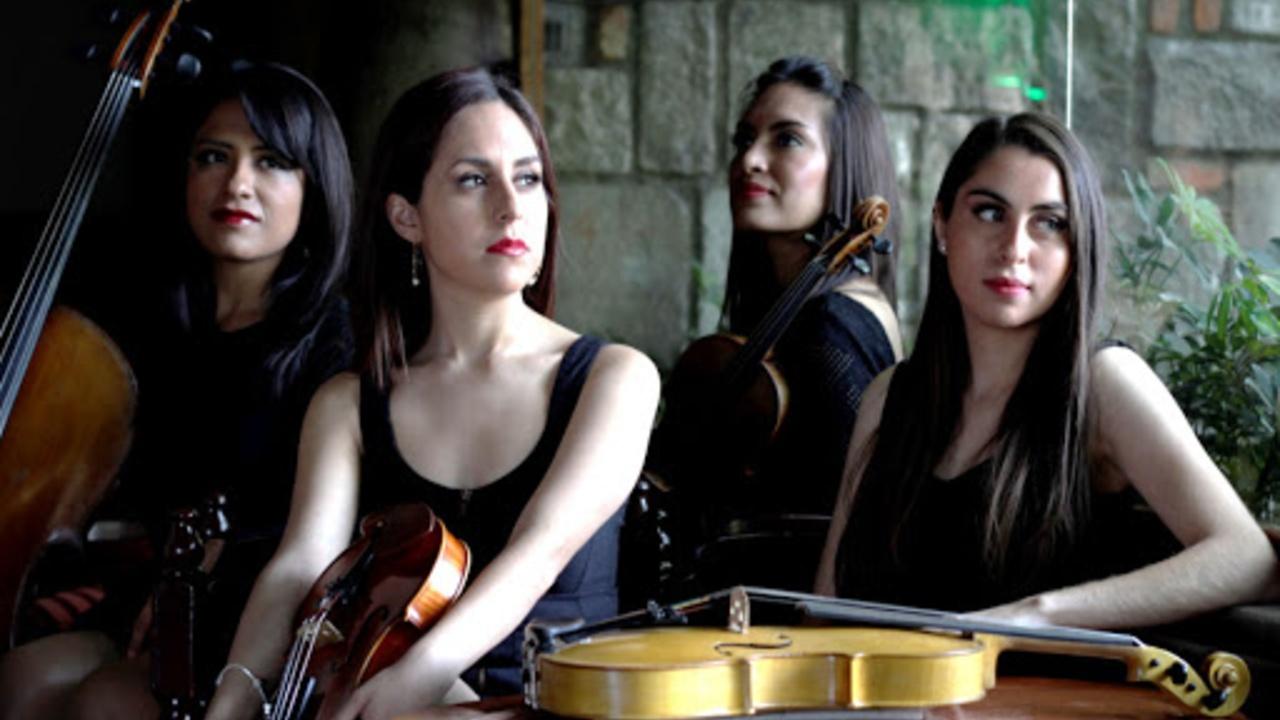 domina string quartet foto cuarteto de cuerdas méxico