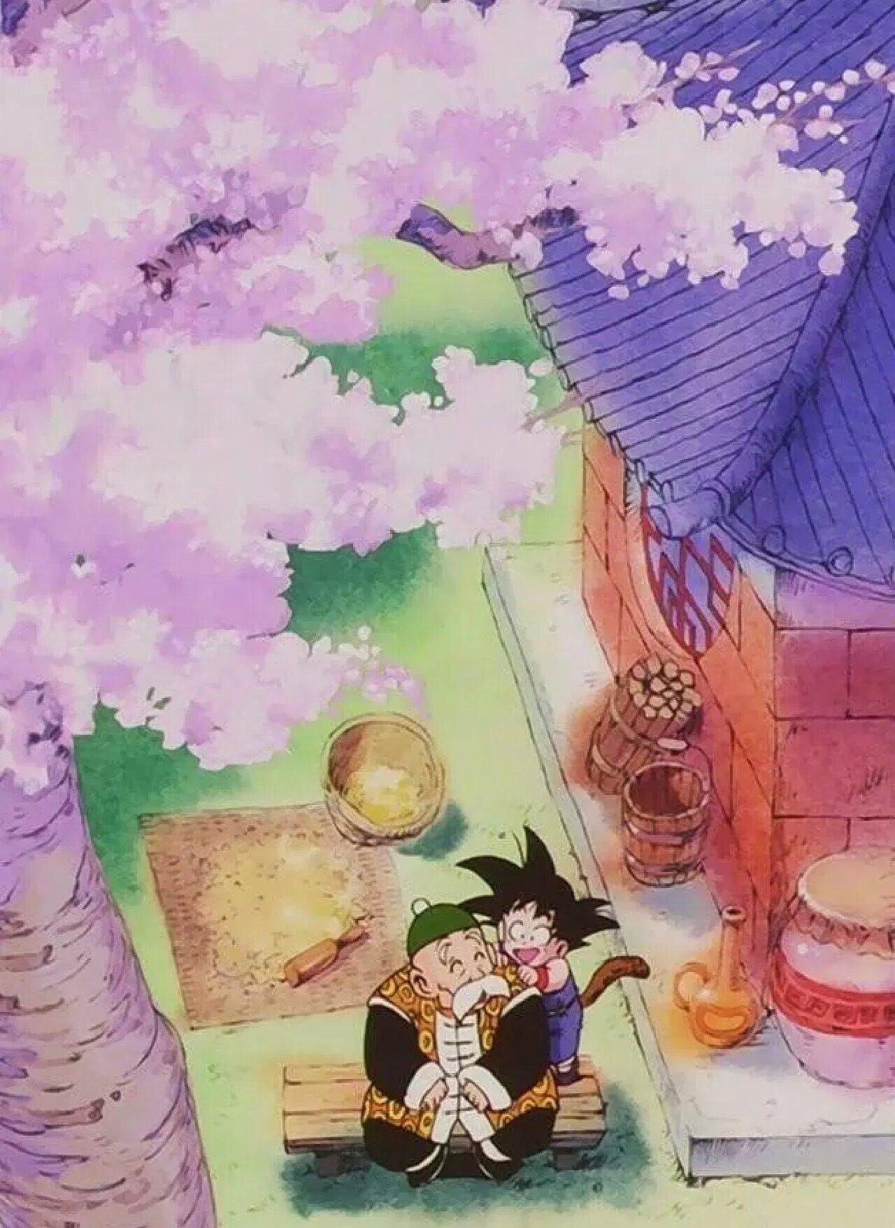 dragon ball abuelo gohan son goku
