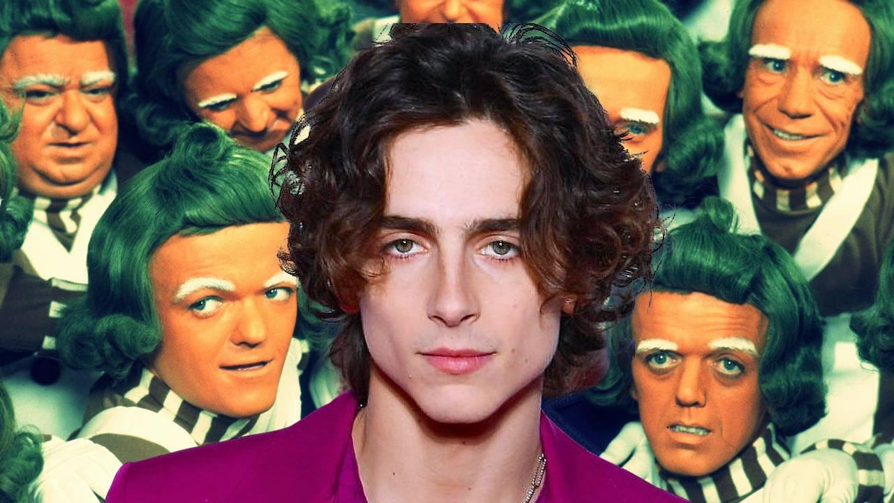 Timothée Chalamet será Willy Wonka en la precuela del director de  Paddington | Código Espagueti