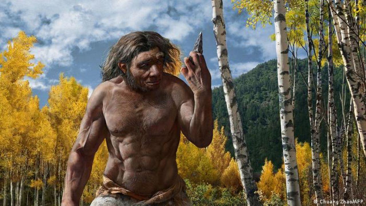posible apariencia del homo longi