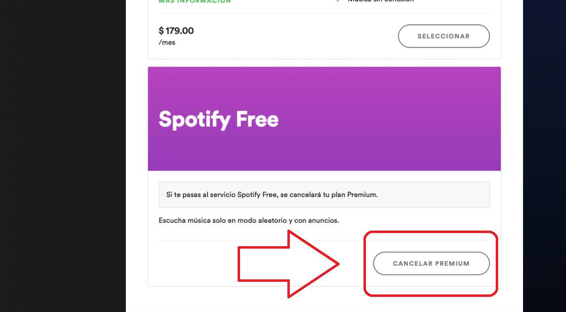 planes de spotify free premium