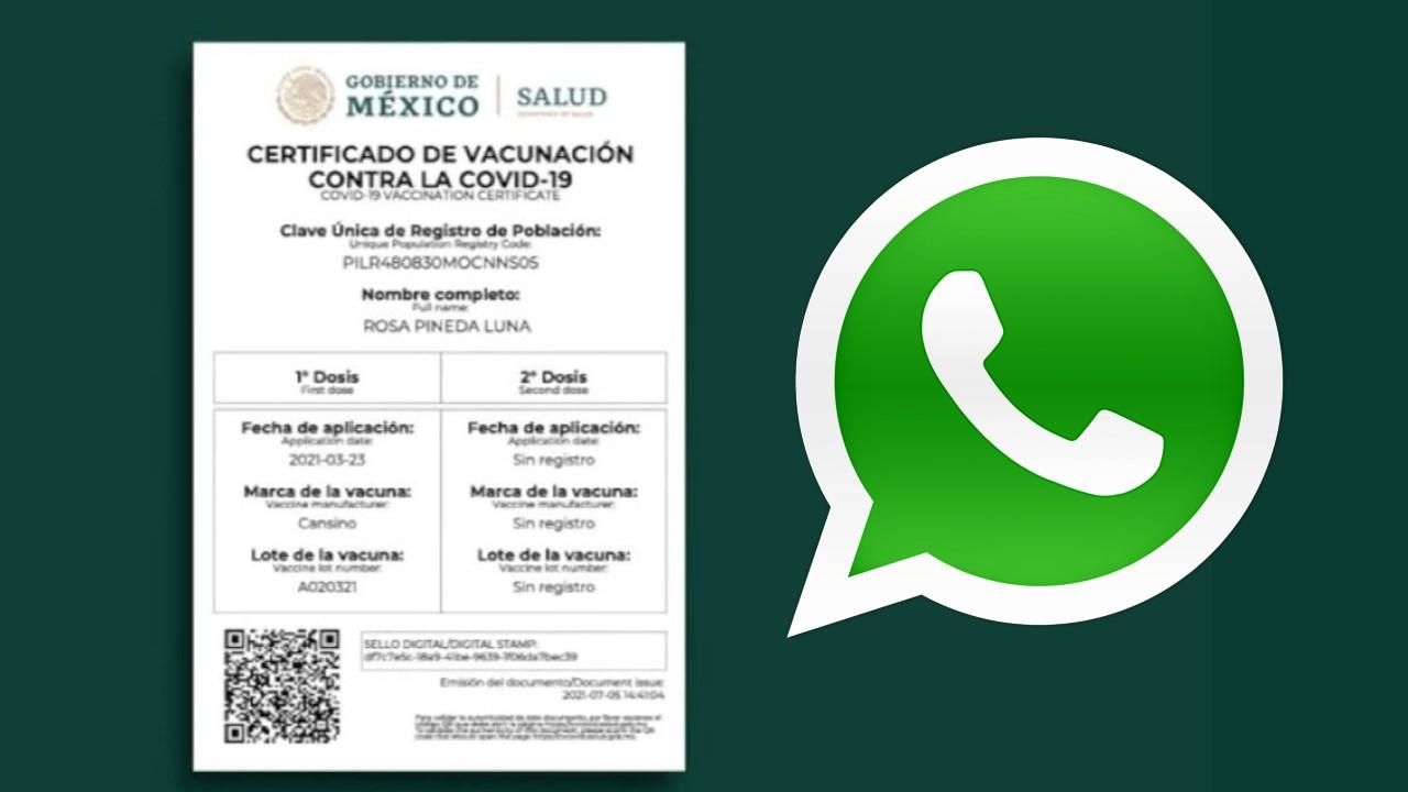 whatsapp certificado covid descargar