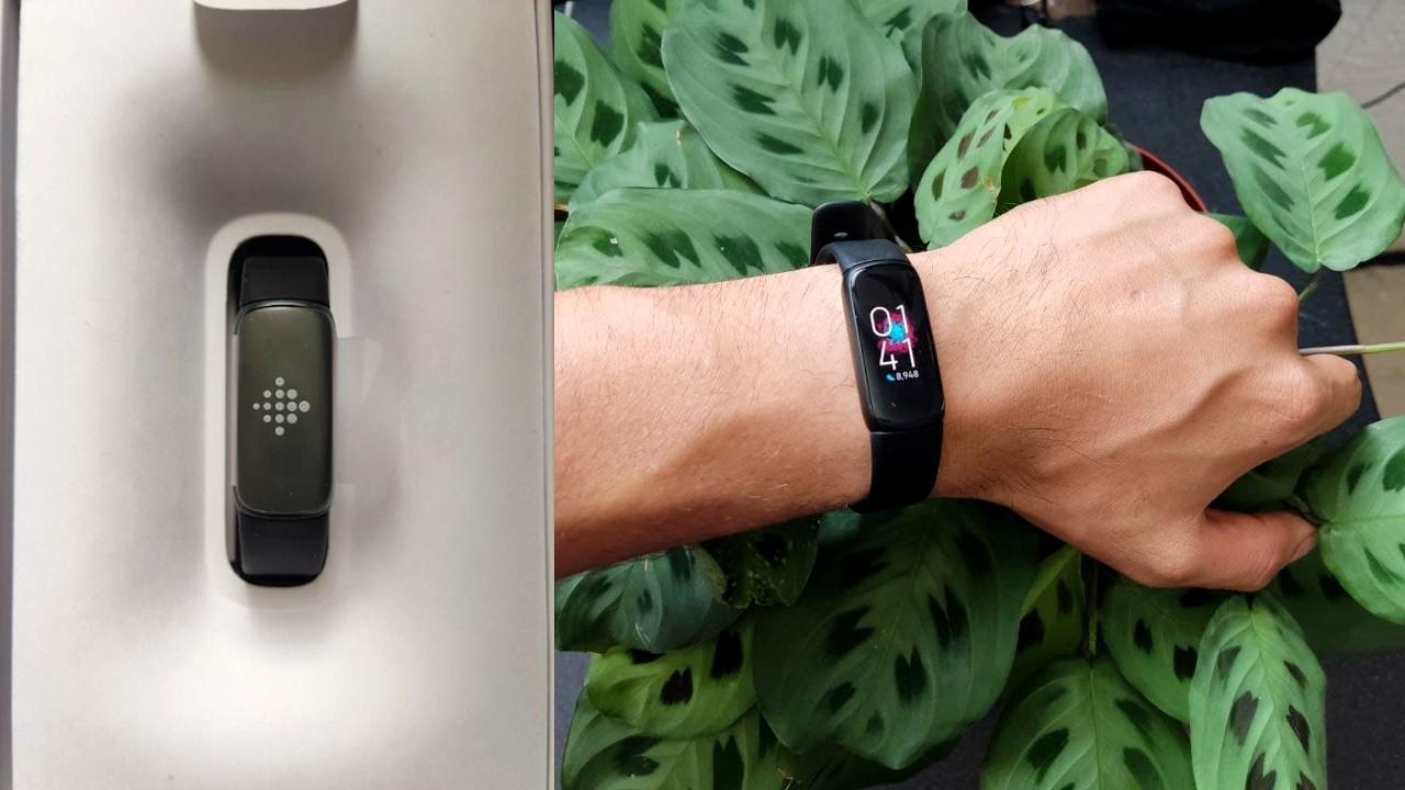 Luxe fitbit banda monitor de salud