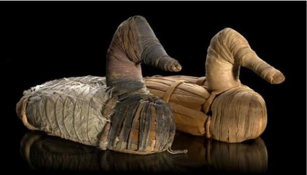 Fotografía de sendos señuelos de pato datados entre los años 400 a.C. - 100 d. C., expuestos en el Museo Nacional del Indio Americano del Smithsonian Institute.