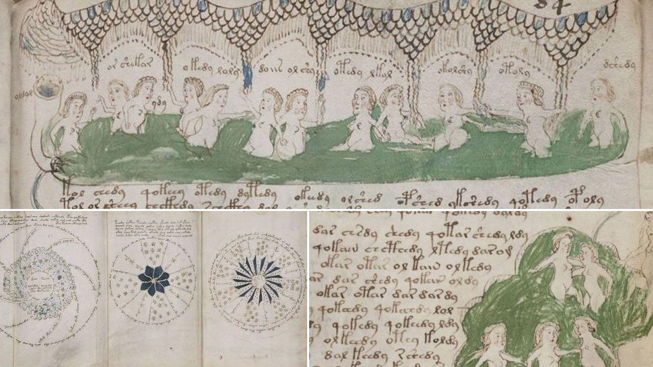 Resultado de imagem para manuscrito de Voynich