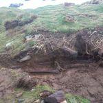Tormenta tropical Ofelia reveló algo bastante extraño en Irlanda