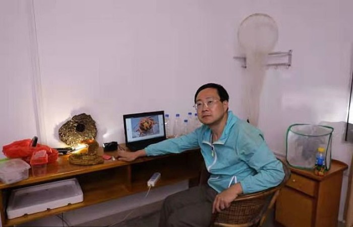 Zhao Li, del Huaxi Insect Museum