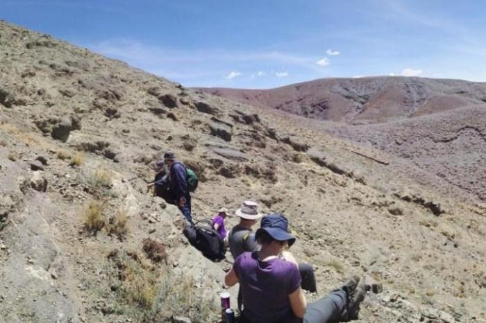 Lugar de trabajo de campo en la meseta tibetana de Qiantang en China durante la campaña de campo donde se descubrió la hoja de palma fósil
