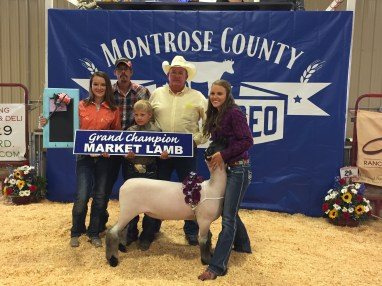 2015 Montrose County Fair and Rodeo Grand Champion Lamb