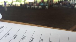 Lining up classes for the Delta County Jr. Market Sheep Show