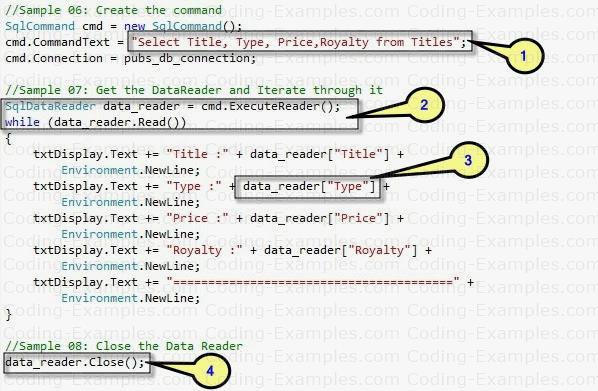 Ado.Net ExecuteReader Example