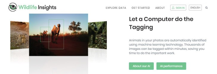 A screenshot of part of Wildlife Insights' home page