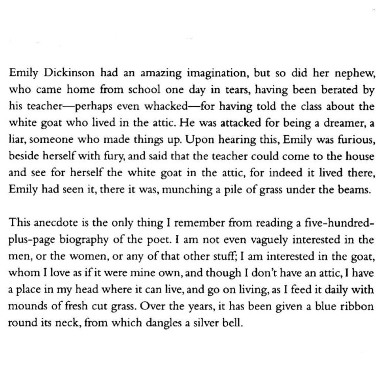 Mary Ruefle from On Imagination. I loved hearing this @tin_house a few years ago. Not surprisingly, her passage here is the bulk of what I remembered of the essay.
