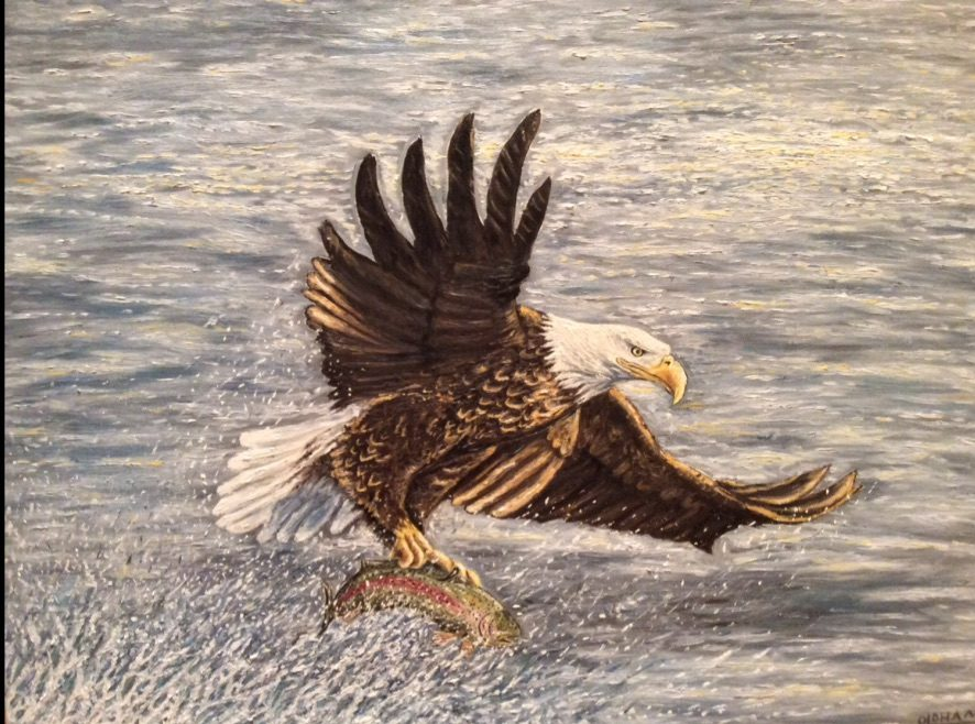 oil painting of bald eagle catching salmon