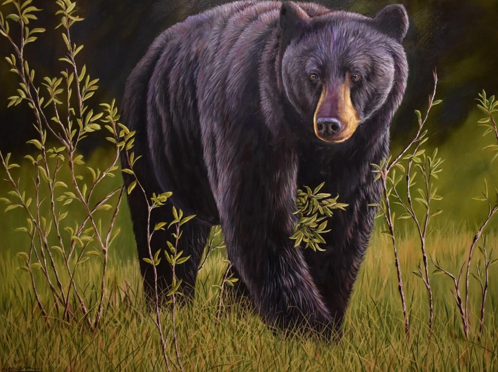 oil painting of black bear