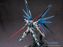 freedom0206