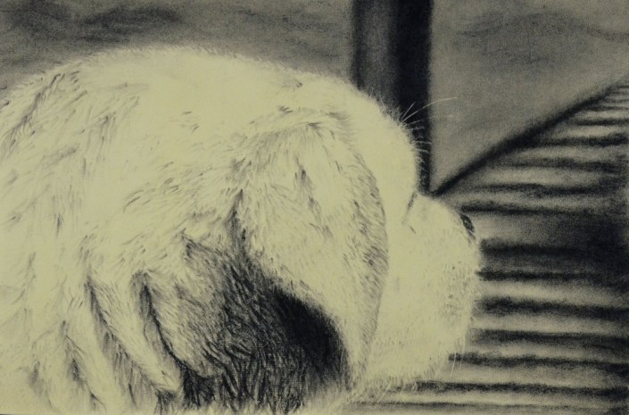 Honorable Mention: The View, by Megan Ewell - Charcoal on Paper (Drawing - Mr. Unrein)