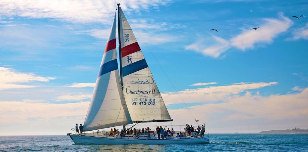 Sailing charter in Santa Cruz: Chardonnay