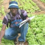 Peace Corps is hiring a Urban Agriculture Extension Agent.