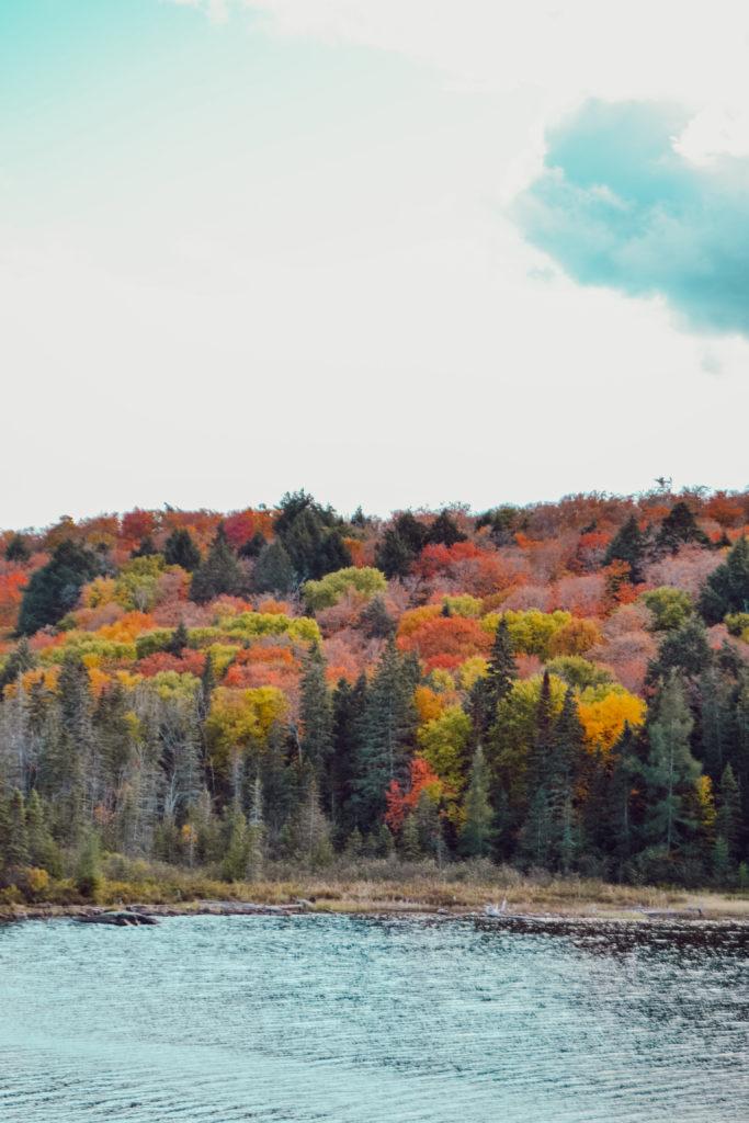 Les couleurs de l'automne au Parc Algonquin au Canada