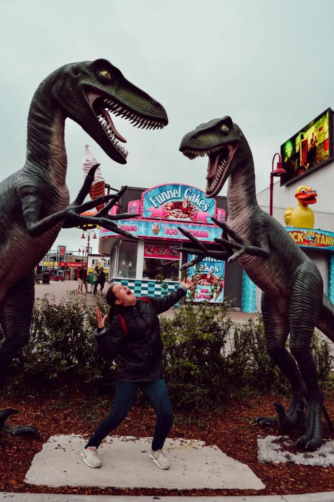 Les Raptors dans le parc d'attraction de Niagara