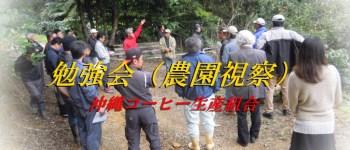 沖縄コーヒー農園視察