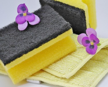 Kitchen Sponge Health Dirty